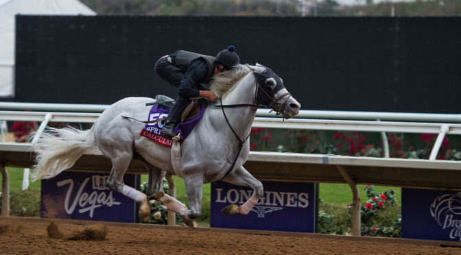 Breeders' Cup coming up