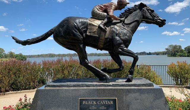 I Black Caviar-land