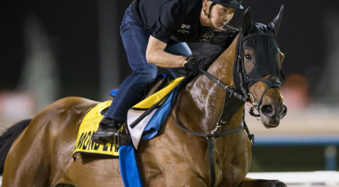 Dubai World Cup-dagen